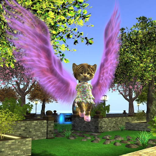 QT Dinkie Kitty with wings