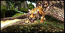 Tiger~LC