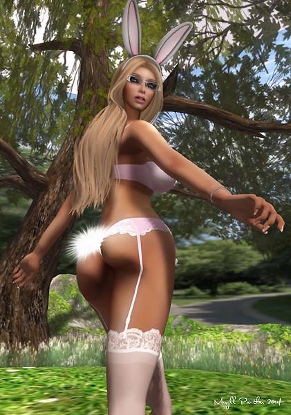 Cotton Tail 2