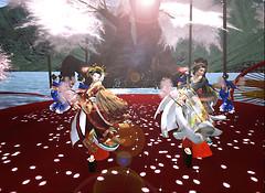 kikuya_0420MAI01