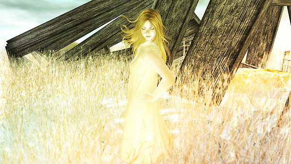 Descending unto a golden field...