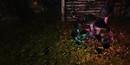Fantasy Faire 2014 Bayou toadstools