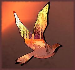 Freebird by Lynyrd Skynyrd