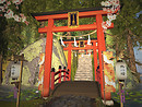 Torii Gateway - Totoro's Forest