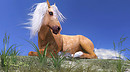 HiveWire Horse Palomino......