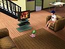 Dwarf watchin TV