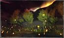 darkfireflies