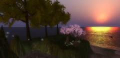 Fantasy Cove