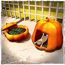 Pumpkin bed and house