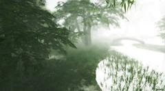Sarawak - foggy morning -