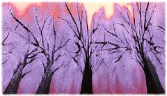 Le cerisier de Marguerite Yourcenar