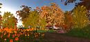 3 Autumn @Pacifique