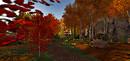 6 Autumn @Pacifique