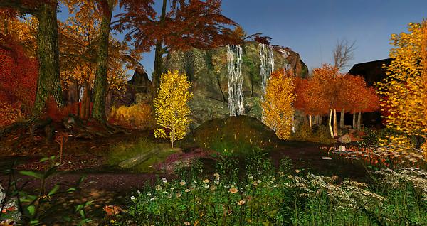 9 Autumn @Pacifique