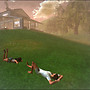 Shasta & Warren - Lazy Day at Home