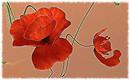 Flower of Love by Oscar Wilde