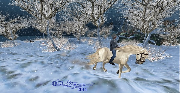 Winter Ride....