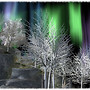 The Ballad Of The Northern Lights by Robert William Service