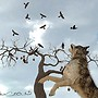 The Taunting of the Crows.....