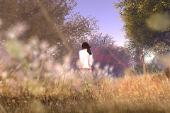season`s image from SecondLife