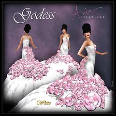 Godess-White