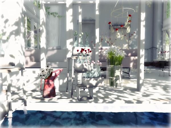 andika garden