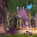 dance pavillion fae lands arwynd