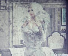 Snapshot_181