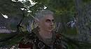 elven Spear ears