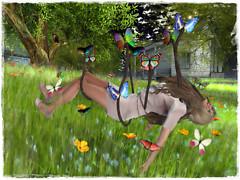 Tame Butterflies