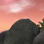 Rayne Isles 5