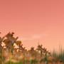 Rayne Isles 4