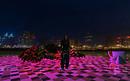Björn M ~ City view @Night!