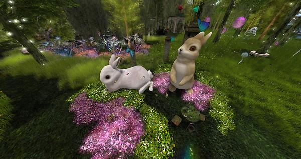 Bunnies_001
