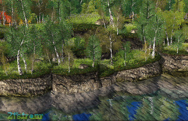 Birch Meadow Landscapes with River Banks