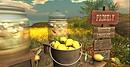 Bella Pace lemons