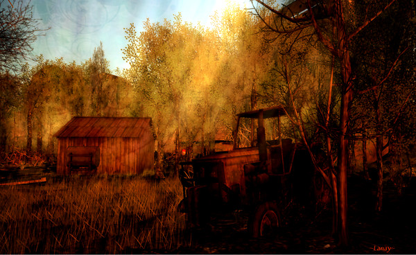 Of Wood and Rust