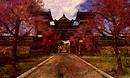 Edo Honshu_016a