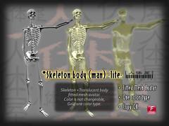 Skeleton_body_(man)_lite_POP