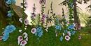 Garden of Eden Costa Amore Flowers