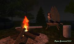 Fall Firelight