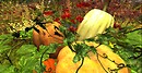 Calas Galadhon Autumn Pumpkins and Poppies