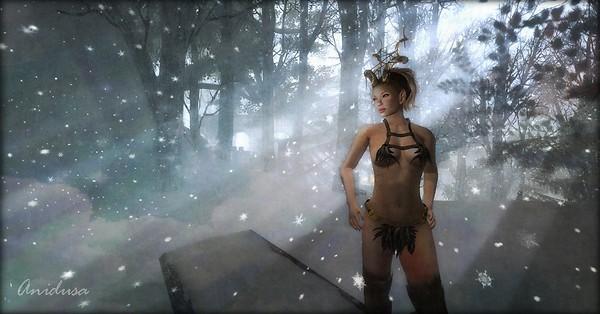 Faun Winter