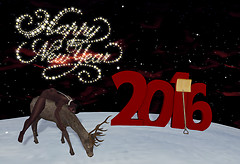 ~TCG~ Happy New Deer!
