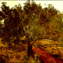 tree rific