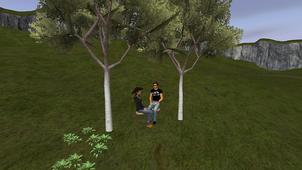 Whispering Forest Ranch