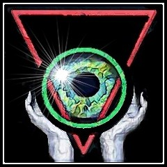 Visual Oragsms Logo