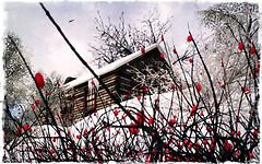 Soir d'hiver - Emile Nelligan