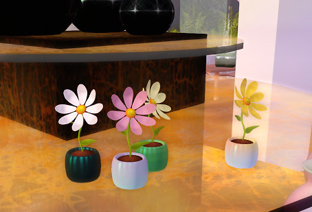 QT Ism shop - happy flowers on display