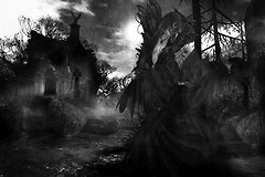 November Graveyard (2)